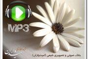 مجموعه نواهای ویژه ماه مبارک رمضان