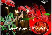 قصه اشک: دیگر زجان سیرم حسین