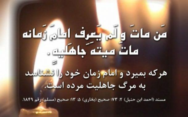 آیا فاطمه زهرا سلام الله علیها امام زمانش را می شناخت؟