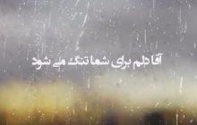 نماهنگ زیبای « آقا، دلم برای شما تنگ می شود»